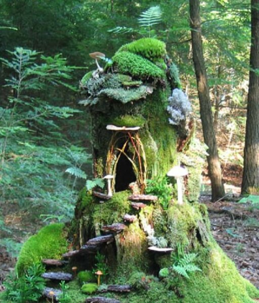 sally-forest-mossy-house