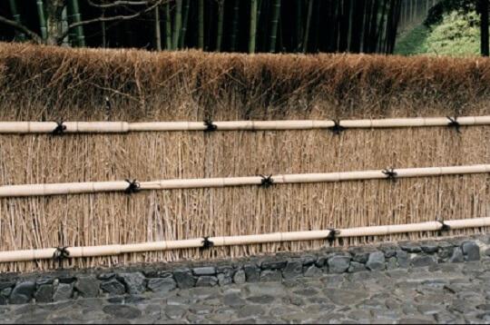 brushwood fence