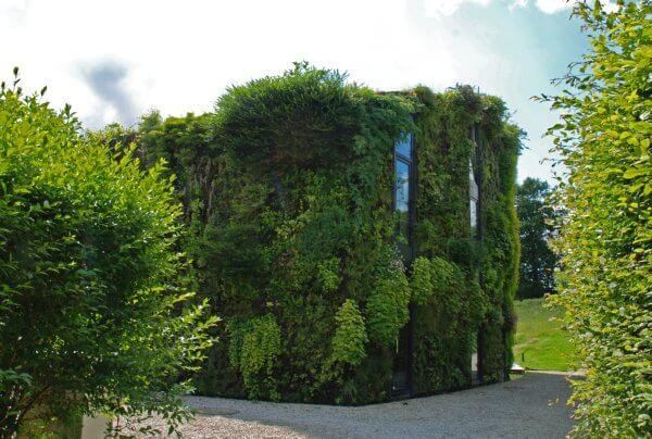 green wall Belgium