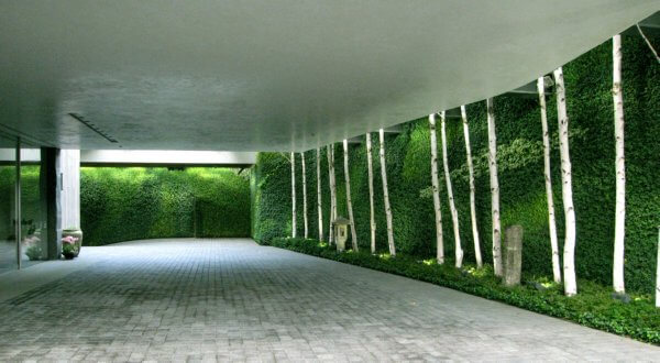 Green Wall Green Wall